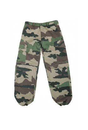 Pantalon F2 AF CAM CE